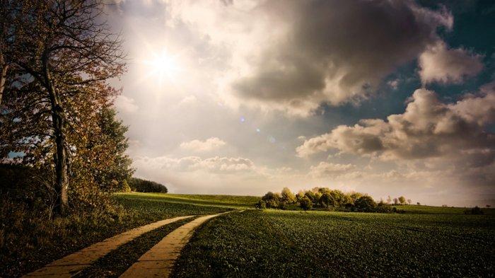 Pour vous ce paysage fond d 39 cran for Fond pour les photos